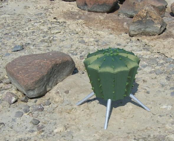 cactus stool